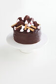 Layer cake with marshmallows and wagon wheel cookies (Australia)