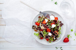 Strawberry salad with balsamic vinegar, fennel, cream cheese, walnuts and greens