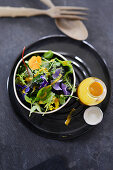Wild herb salad with a mustard dressing