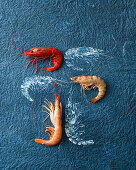 Various prawns on a blue surface
