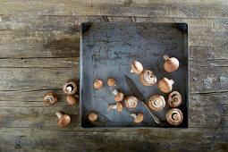 Fresh mushrooms on a metal tray