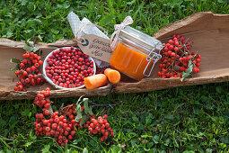 Rowan berry and carrot puree