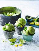 Kiwifruit and Basil Sherbet