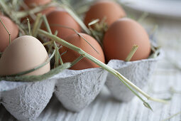 Eggs in an egg box with straw