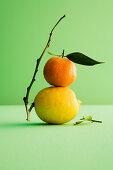 Orange und Zitrone, gestapelt