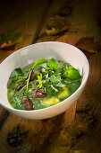 Natural cuisine: potato soup with water cress, spinach and mushrooms
