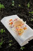 Natural cuisine: magnolia sorbet and yuzu parfait on rice paper
