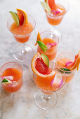 Rose Ginger (cocktails with ginger beer, tequila, lime and grapefruit juice)