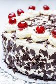 Black Forest cake (close up)