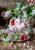 Strawberry zefir