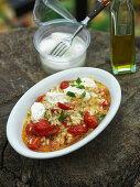 Tomato risotto with mozzarella and basil