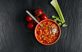 Minestrone Soup with cheese