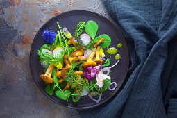 Herb salad with chanterelle mushrooms and radishes
