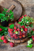 Frische Erdbeeren im Drahtkorb