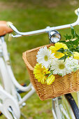 White and yellow summer flowers in basket of bicycle