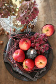 Autumnal arrangement of apples, twigs, hydrangeas and candle