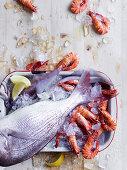 Fish and prawns