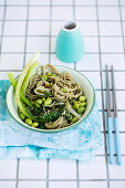 Soba noodle Bowls with chilli Garlic Sauce vegetable life