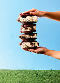 Semifreddo ice cream sandwich
