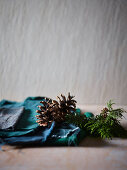 Conifer branch and dried pine cones in front of grey wall