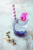 Mocktail (tonic water with butterfly pea syrup)