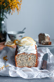 Sponge cake with lemon and poppy seeds decorated with icing and slices of fresh lemon