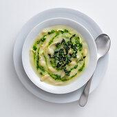 Creamy potato soup with pasta and Tuscan kale pesto