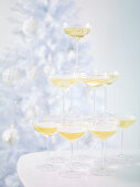 A tower of champagne glasses in front of a Christmas tree