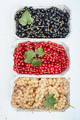 Black, red and white currants in cardboard bowls