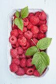 Fresh raspberries in a cardboard bowl
