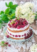 Red berry quark cake