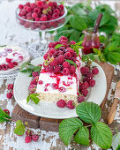 Frozen_raspberry cake with cottage cheese and vanilla sponge