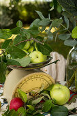 Apple still life with scales