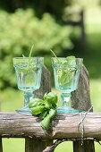 Basil wine for detoxification