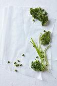 Grünes Gemüse auf Papier