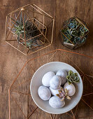 Easter eggs and cacti on wooden table