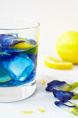 Butterfly pea cocktail with lemonsand vodka (or gin)