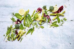 Green lettuce and vegetables