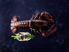 A whole lobster on a dark surface