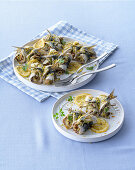 Sardine rolls with Pancetta