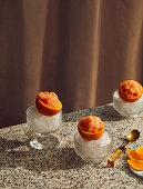 Campari and orange granita