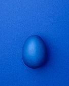 Blue Easter egg on a blue background