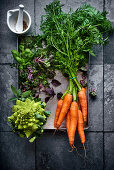 A bundle of carrots, Romanesco broccoli, Brussels sprouts and herbs