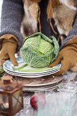 Hands with gloves holding a plate with a savoy cabbage