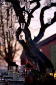 Hanging lanterns on a tree over a settable