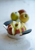 Apple on apple divider