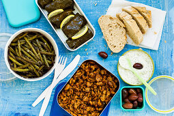 Soy yros with vegan tzatziki, stuffed grape leaves, and beans