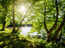 Sunny day on the banks of the River Alster, Hanseatic City of Hamburg, Germany, Europe