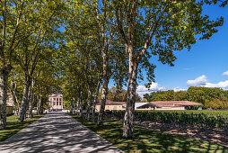 Chateau Margeaux , Weinbau, Medoc, Weingut, neuer Chai designed von Norman Forster,   Bordeaux, Gironde, Aquitanien , Frankreich, Europa
