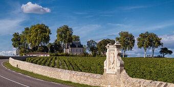 Chateau Latour, Weinbau, Medoc, Bordeaux, Gironde, Aquitaine, Frankreich, Europa
